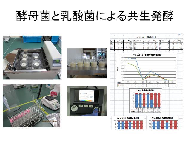 【龍氣養命堂】体内酵素補助食品 『元気の素フコイダン』(半月分)2箱