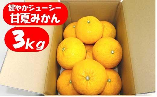 健やかジューシー・甘夏みかん・約3kg