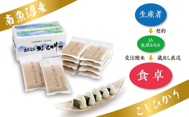 【JAみなみ魚沼定期便】南魚沼産こしひかり(真空2合パック30袋入×全9回)