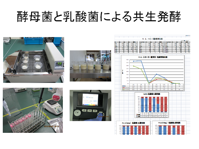 【龍気養命堂】体内酵素補助食品 『元氣の素フコイダン』(1カ月分)4箱