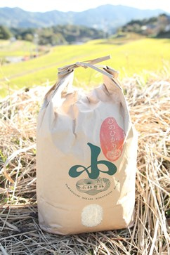 新米【ヒノヒカリ/10kg】小林農林のお米