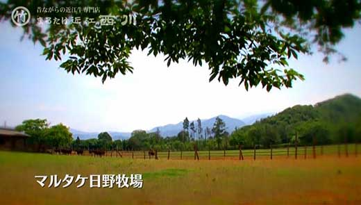 近江牛しゃぶしゃぶ用 450g【N005-C】