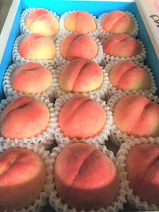 <甘い香りと果汁が自慢>桃4kg(15玉)