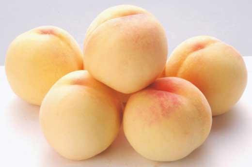 かつらぎ町産桃の女王『清水白桃』約4kg≪ご家庭用≫