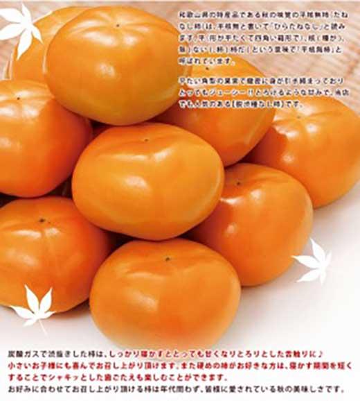 かつらぎ町産平核無柿約10kg(5kg×2)