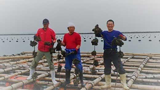 なりきり 漁師さん 牡蠣オーナーになろう