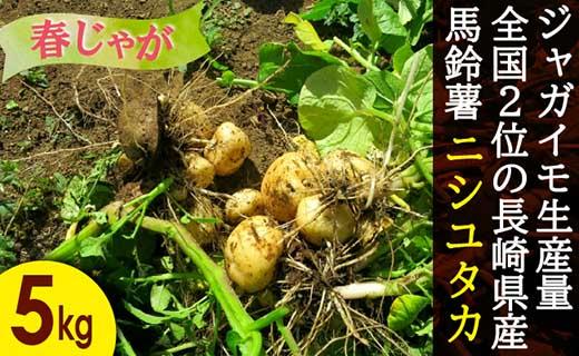 長崎県産飛子の馬鈴薯5kg(春じゃが)
