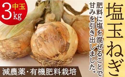 肥料にこだわった「塩玉ねぎ」中玉約3kg一般的な使いやすいサイズ(新玉ねぎ)長崎県産