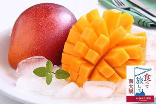 <鹿児島県産>美味しさまるごと冷凍マンゴー!3kg
