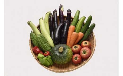 宇目の農家さんが減農薬で育てた夏野菜の詰め合わせ