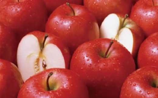 【受付終了】S7013-C【2018年度】りんご 5kg