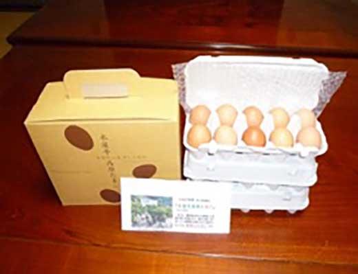 <月5個限定!>美馬市 木屋平高原たまご(10個入り×3パック)<放し飼い卵>