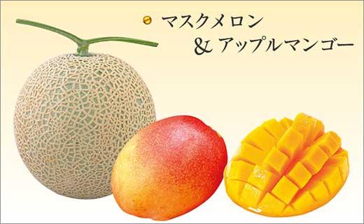 高知県産 マスクメロンとアップルマンゴーのセット