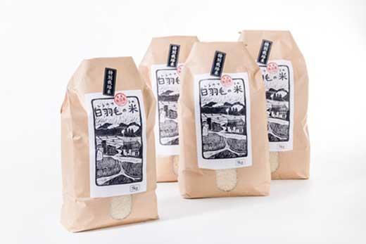 ≪令和元年産≫ 農家直送!魚沼産コシヒカリ 特別栽培「白羽毛の米」精米20kg(5kg×4袋)