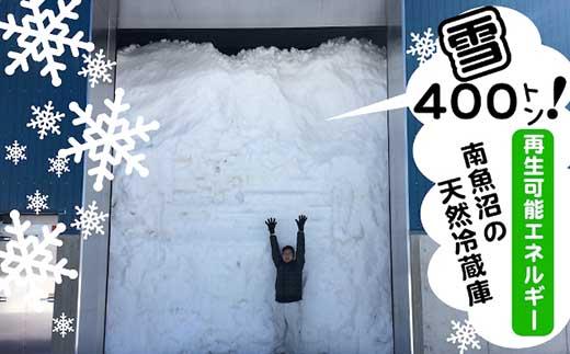 【頒布会15kg×全6回】雪室貯蔵・南魚沼産コシヒカリ特別栽培