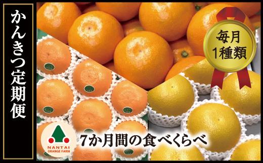 限定数10有田かんきつ定期便(7ヶ月間)【南泰園】