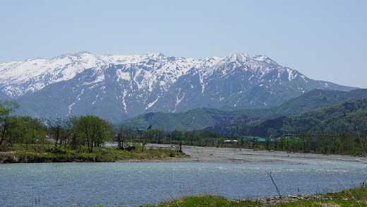 【令和01年産】JAみなみ魚沼の最高峰有機栽培米南魚沼産コシヒカリ5kg