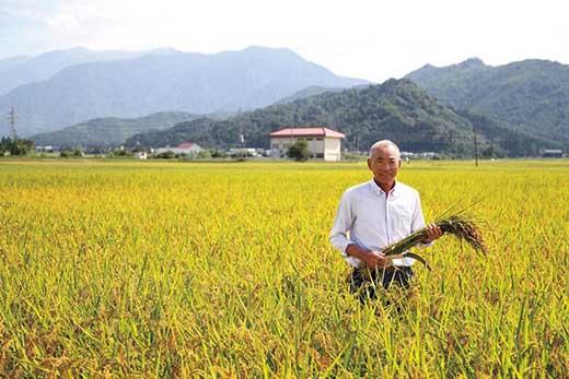 【令和01年産】選ばれた匠がつくる「特別栽培米8割減」10kg