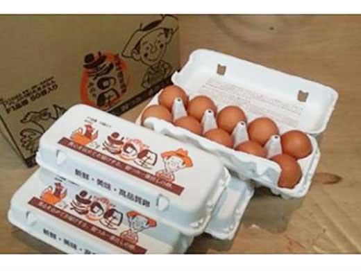 若鶏卵美の里50個入り