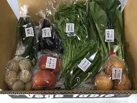 【定期便】旬の京野菜毎月お届けBコース (全12回)