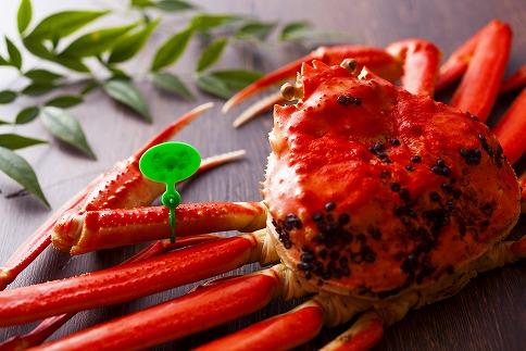 【数量限定200】京丹後市産茹でたて未冷凍茹で間人ガニ大善ガニ特撰大サイズ1000g級1匹