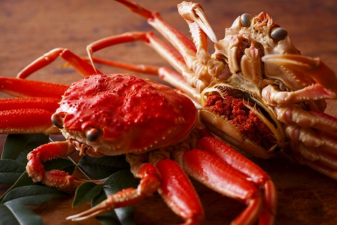 【数量限定100】内子外子が美味! 茹でたて 未冷凍 茹でせこ蟹(セイコガニ)(こっぺ) 大サイズ 5匹セット