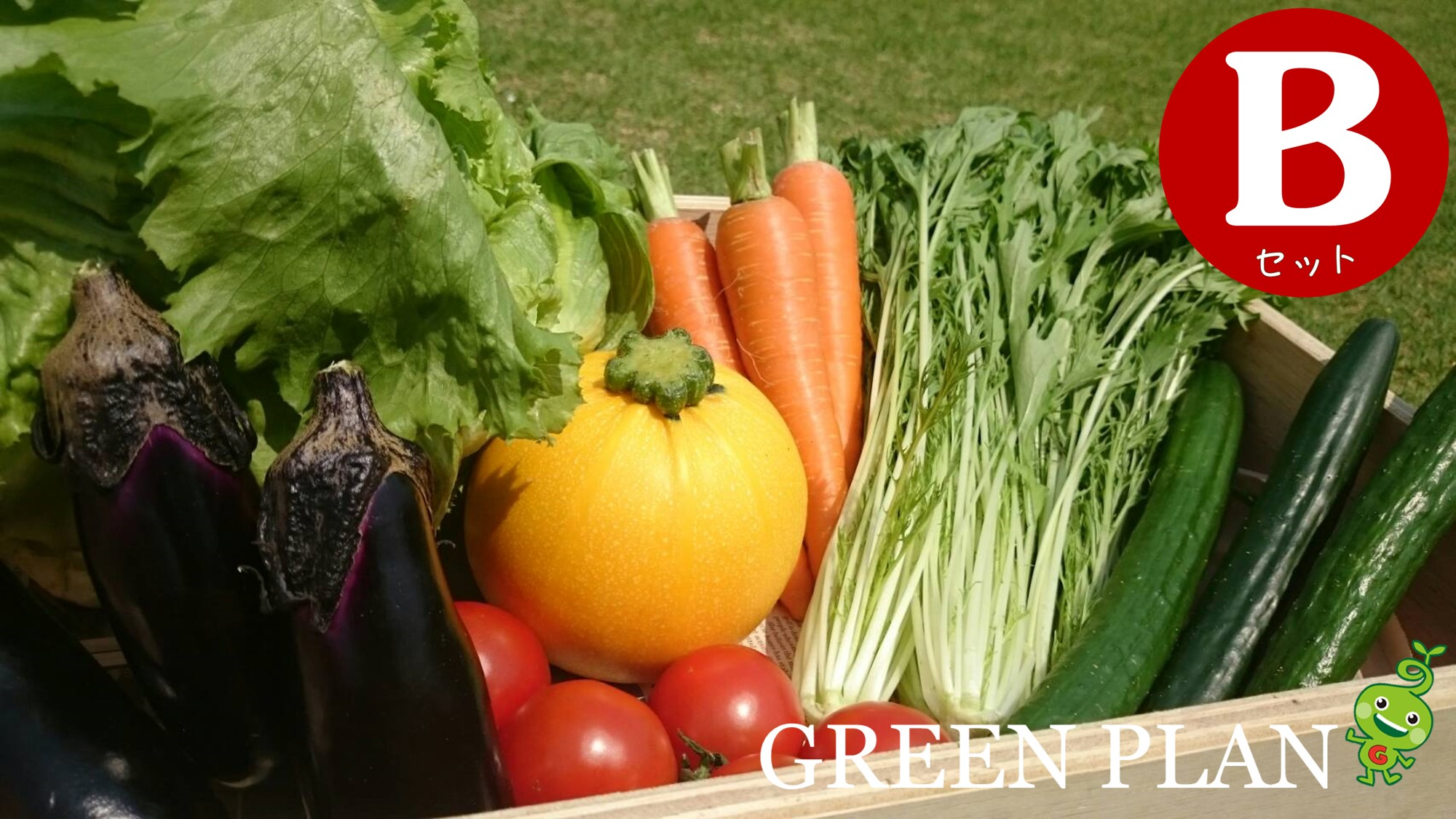 旬の野菜7種+果物・お米など詰合せBセット