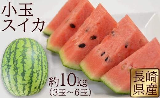 長崎県産 小玉スイカ 約10kg(3玉~6玉)【2019年6月~7月より発送開始】