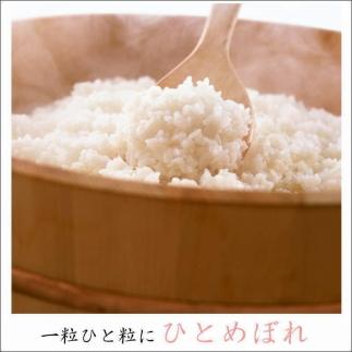 RM753-C【30年度産】ひとめぼれ無洗米10kg(5kg×2袋)