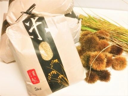 ◆【2018年初物・新米】 契約栽培 近江米 ハナエチゼン 5kg× 1袋 精米済