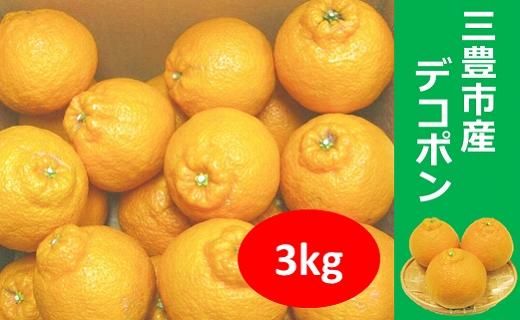 三豊市産 デコポン 3kg
