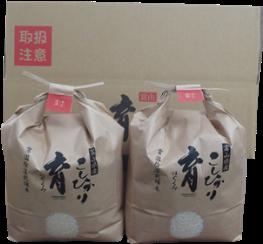 定期便・12回富山県産こしひかり 育(はぐくみ)白米3㎏×2袋