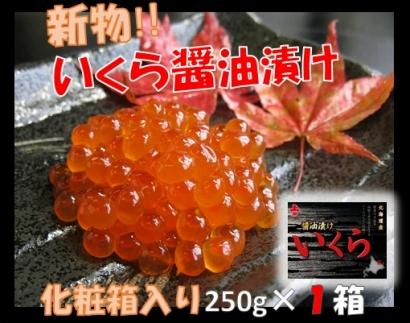 【期間・数量限定】新物!いくら醤油漬250g×1箱