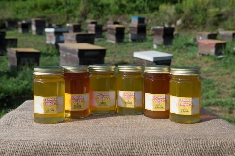 みずなみ高原で採れた天然無添加非加熱の熟成ハチミツ(山桜500g×2 アカシア500g×2 ソヨゴ500g×2)