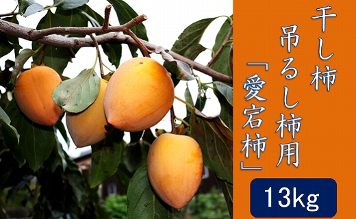 干し柿・吊るし柿用「愛宕柿」13kg