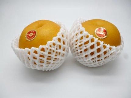 新高梨(1箱約5kg7玉~8玉)