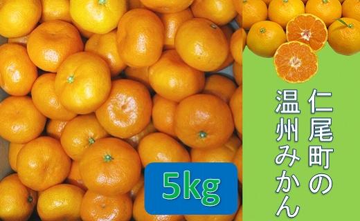 【ポイント交換】仁尾町の温州みかん(晩生種)5kg