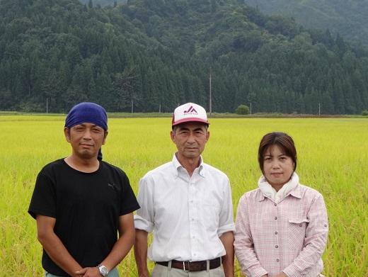 【昔ながらの純粋なコシヒカリ】特別栽培米4.5kg