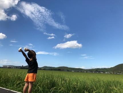 令和元年産特別栽培近江米『みずがかみ』玄米30kg