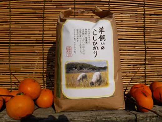 白米)瀬戸内三原羊飼いのこしひかり(無肥料無農薬米)3.3kg