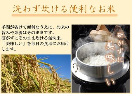 【JAみなみ魚沼頒布会】南魚沼産こしひかり無洗米(5㎏×全12回)