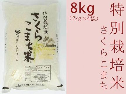 あきたこまち「特別栽培米さくらこまち8kg」中仙さくらファーム