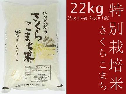 あきたこまち「特別栽培米さくらこまち22kg」中仙さくらファーム