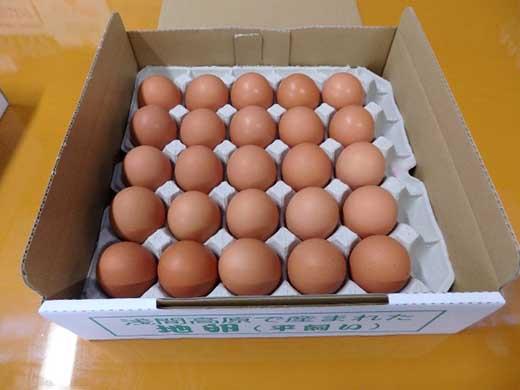 有名レストラン、一流老舗旅館で使われる「浅間とり牧場卵」大玉50個
