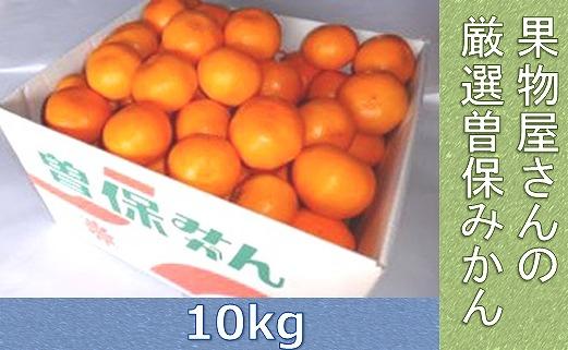果物屋さんの特選曽保みかん(10kg)