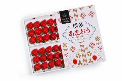 博多あまおう700g(化粧箱)