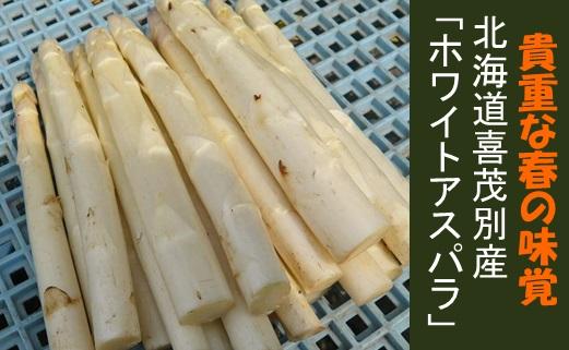 【2019年発送】貴重な春の味覚北海道喜茂別産「ホワイトアスパラ」1kg(MLサイズ混)