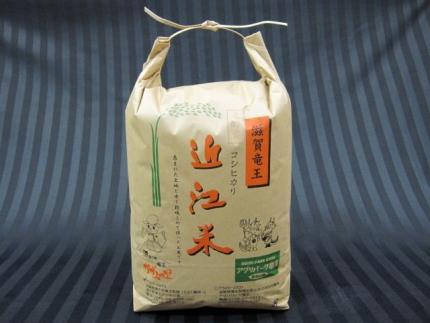30年産 近江米コシヒカリ(白米)10kg