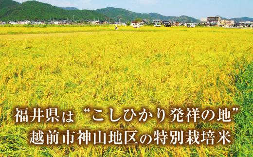【定期便2回】特別栽培米コシヒカリ8㎏&宗近そば