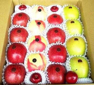 【季節限定】盛岡の旬のりんご5キロ詰め合わせ